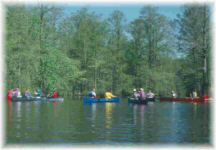 Chickahominy Swamp